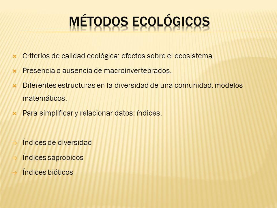 Criterios de calidad ecológica: efectos sobre el ecosistema. Presencia o ausencia de macroinvertebrados. Diferentes estructuras en la diversidad de un