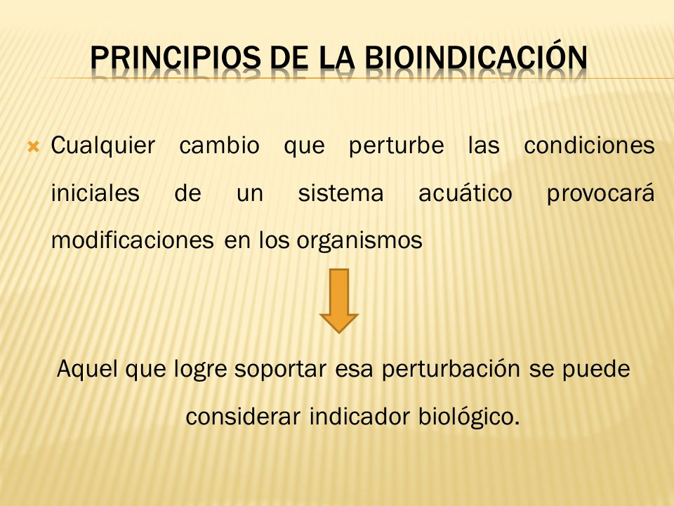 Cualquier cambio que perturbe las condiciones iniciales de un sistema acuático provocará modificaciones en los organismos Aquel que logre soportar esa
