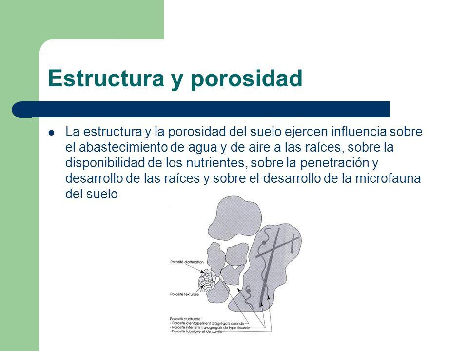 Estructura y porosidad La estructura y la porosidad del suelo ejercen influencia sobre el abastecimiento de agua y de aire a las raíces, sobre la disp