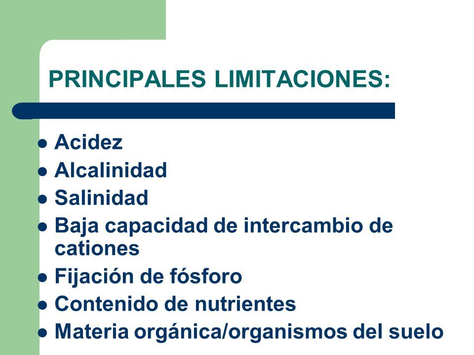 PRINCIPALES LIMITACIONES: Acidez Alcalinidad Salinidad Baja capacidad de intercambio de cationes Fijación de fósforo Contenido de nutrientes Materia o