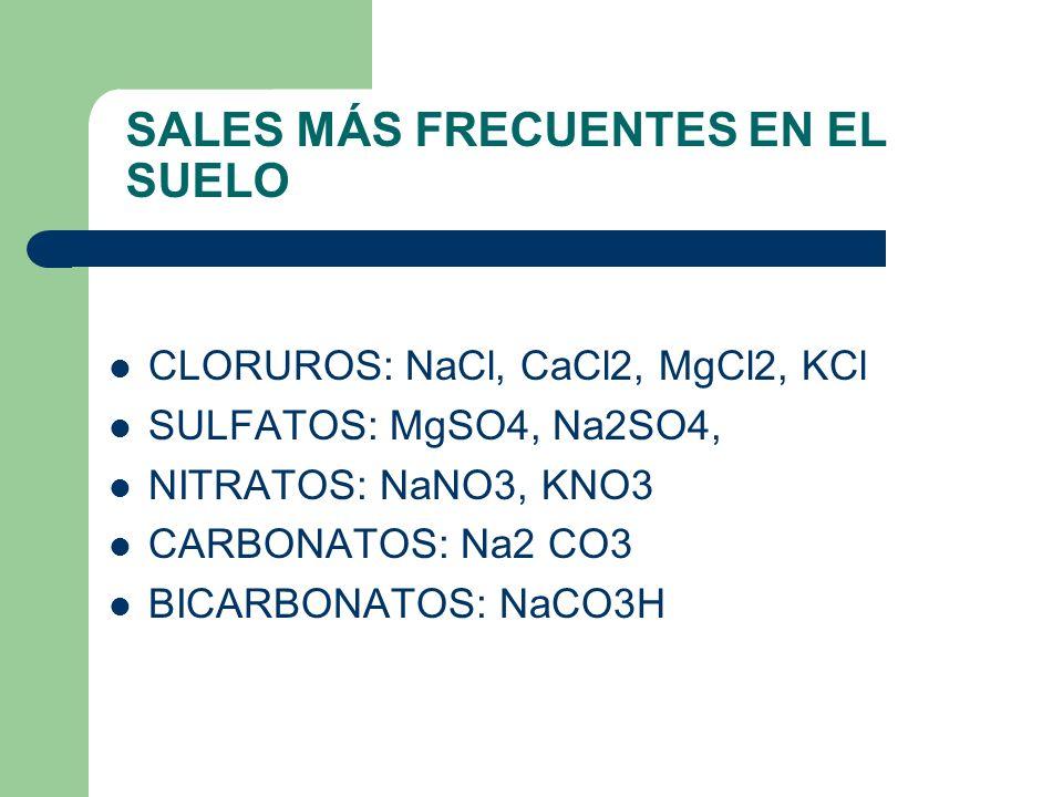 SALES MÁS FRECUENTES EN EL SUELO CLORUROS: NaCl, CaCl2, MgCl2, KCl SULFATOS: MgSO4, Na2SO4, NITRATOS: NaNO3, KNO3 CARBONATOS: Na2 CO3 BICARBONATOS: Na
