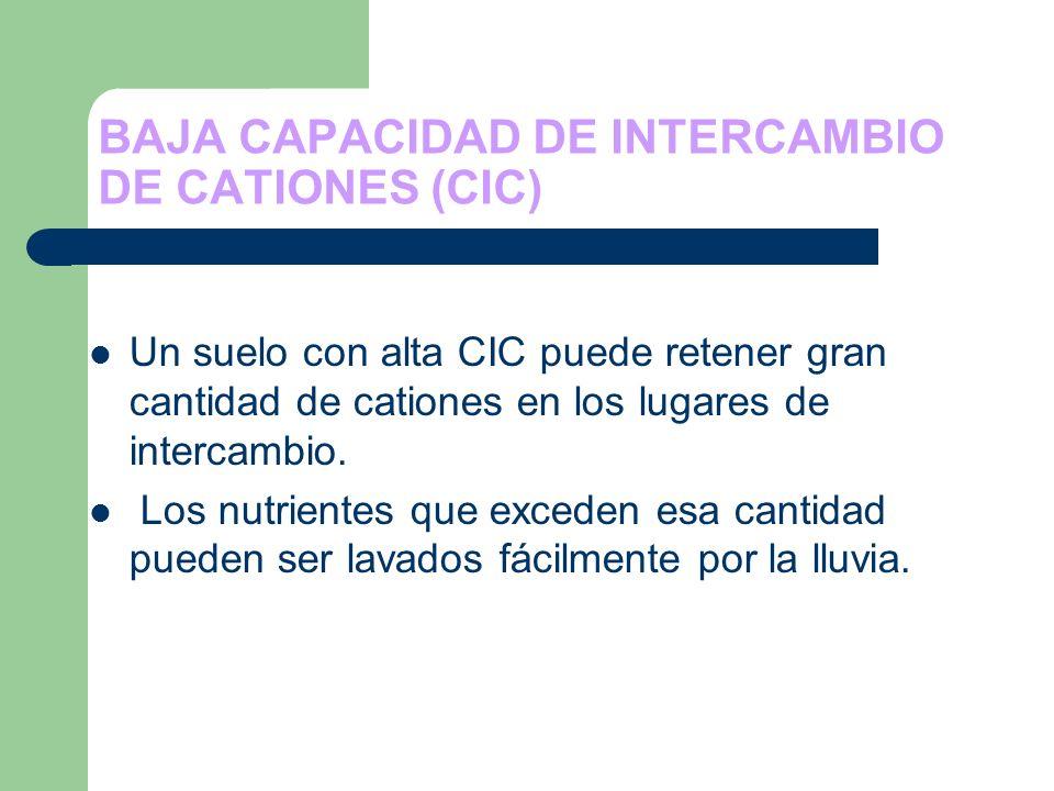 BAJA CAPACIDAD DE INTERCAMBIO DE CATIONES (CIC) Un suelo con alta CIC puede retener gran cantidad de cationes en los lugares de intercambio. Los nutri