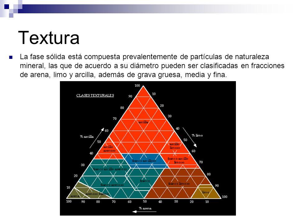 Textura La fase sólida está compuesta prevalentemente de partículas de naturaleza mineral, las que de acuerdo a su diámetro pueden ser clasificadas en