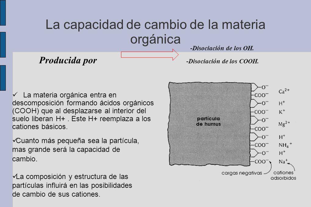La capacidad de cambio de la materia orgánica -Disociación de los OH. Producida por -Disociación de los COOH. Cuanto más pequeña sea la partícula, mas