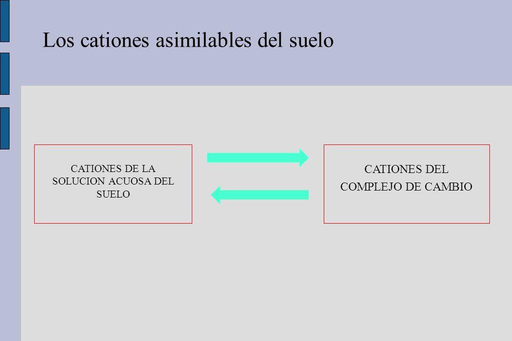 Vegetación La absorción de nutrientes influye en la acidificación de los suelos.