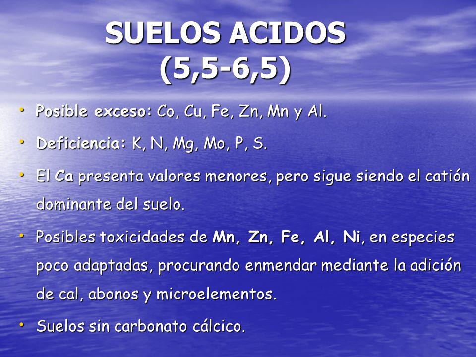 Posible exceso: Co, Cu, Fe, Zn, Mn y Al. Posible exceso: Co, Cu, Fe, Zn, Mn y Al. Deficiencia: K, N, Mg, Mo, P, S. Deficiencia: K, N, Mg, Mo, P, S. El