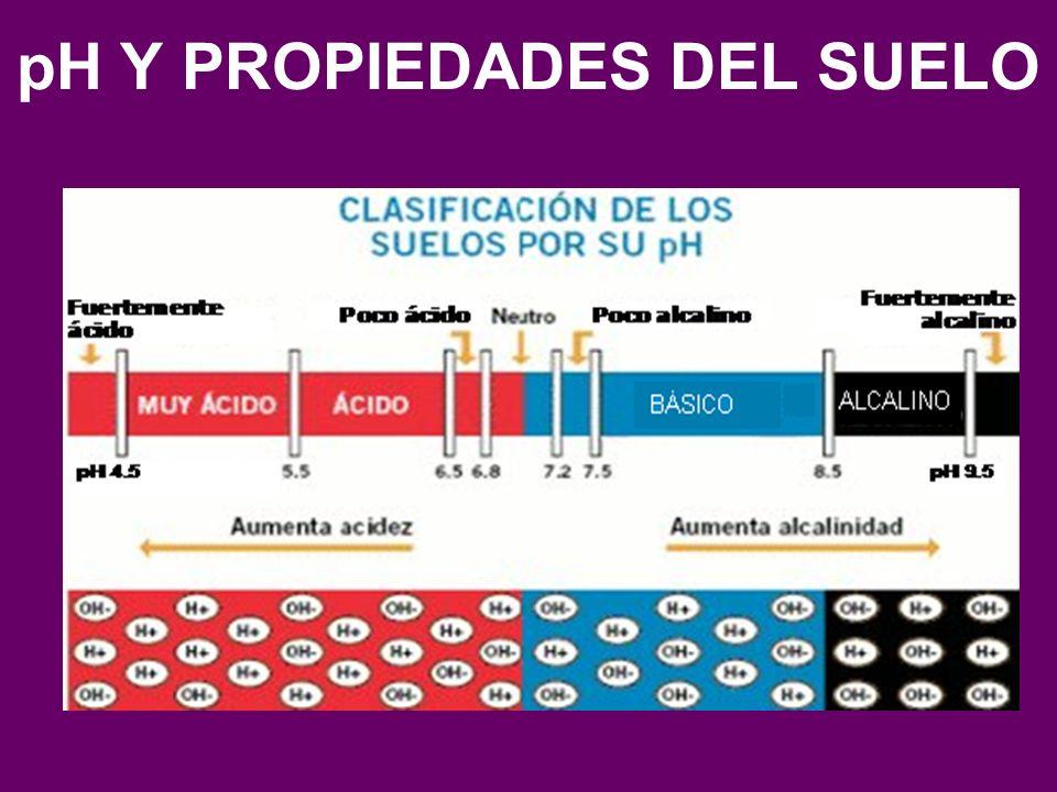 pH Y PROPIEDADES DEL SUELO