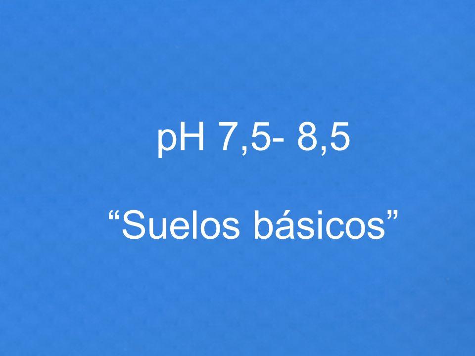 pH 7,5- 8,5 Suelos básicos