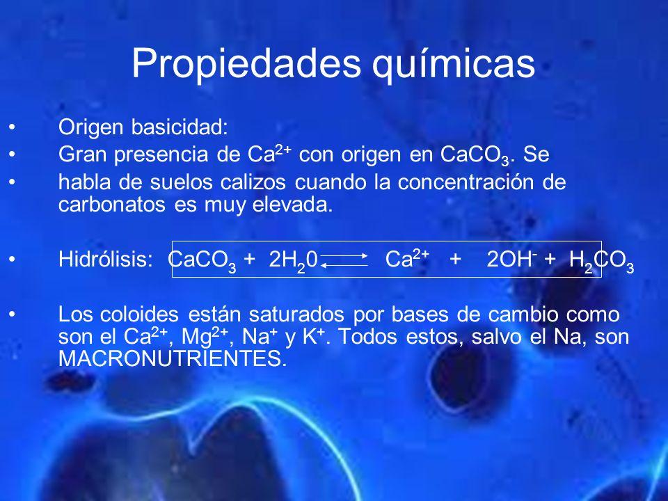Propiedades químicas Origen basicidad: Gran presencia de Ca 2+ con origen en CaCO 3. Se habla de suelos calizos cuando la concentración de carbonatos