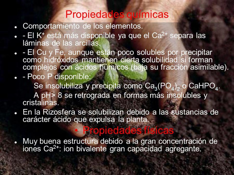 Propiedades químicas Comportamiento de los elementos. - El K + está más disponible ya que el Ca 2+ separa las láminas de las arcillas. - El Cu y Fe, a