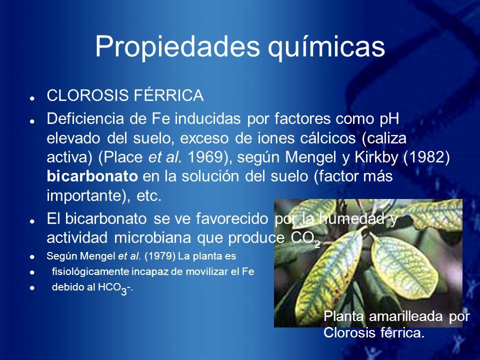 Propiedades químicas Planta amarilleada por Clorosis férrica. CLOROSIS FÉRRICA Deficiencia de Fe inducidas por factores como pH elevado del suelo, exc