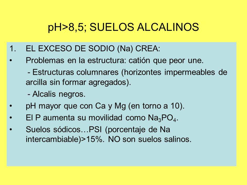 pH>8,5; SUELOS ALCALINOS 1.EL EXCESO DE SODIO (Na) CREA: Problemas en la estructura: catión que peor une. - Estructuras columnares (horizontes imperme
