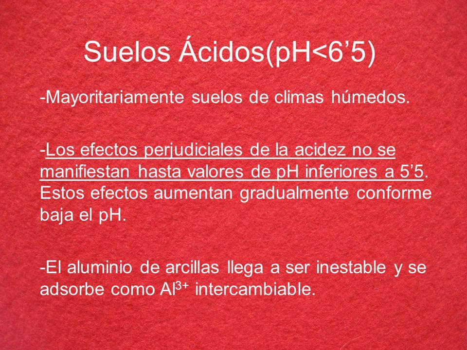 Suelos Ácidos(pH<65) -Mayoritariamente suelos de climas húmedos. -Los efectos perjudiciales de la acidez no se manifiestan hasta valores de pH inferio