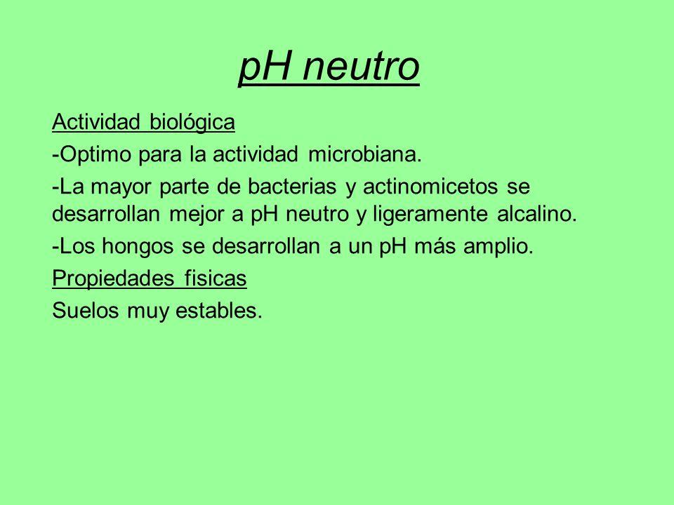 pH neutro Actividad biológica -Optimo para la actividad microbiana. -La mayor parte de bacterias y actinomicetos se desarrollan mejor a pH neutro y li