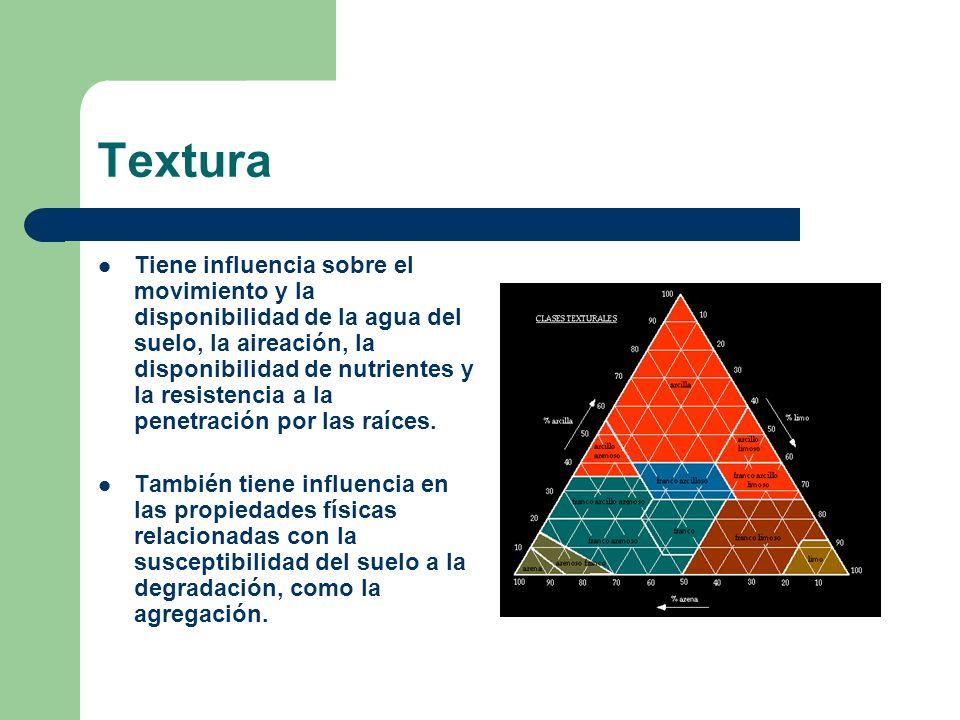 Textura Tiene influencia sobre el movimiento y la disponibilidad de la agua del suelo, la aireación, la disponibilidad de nutrientes y la resistencia