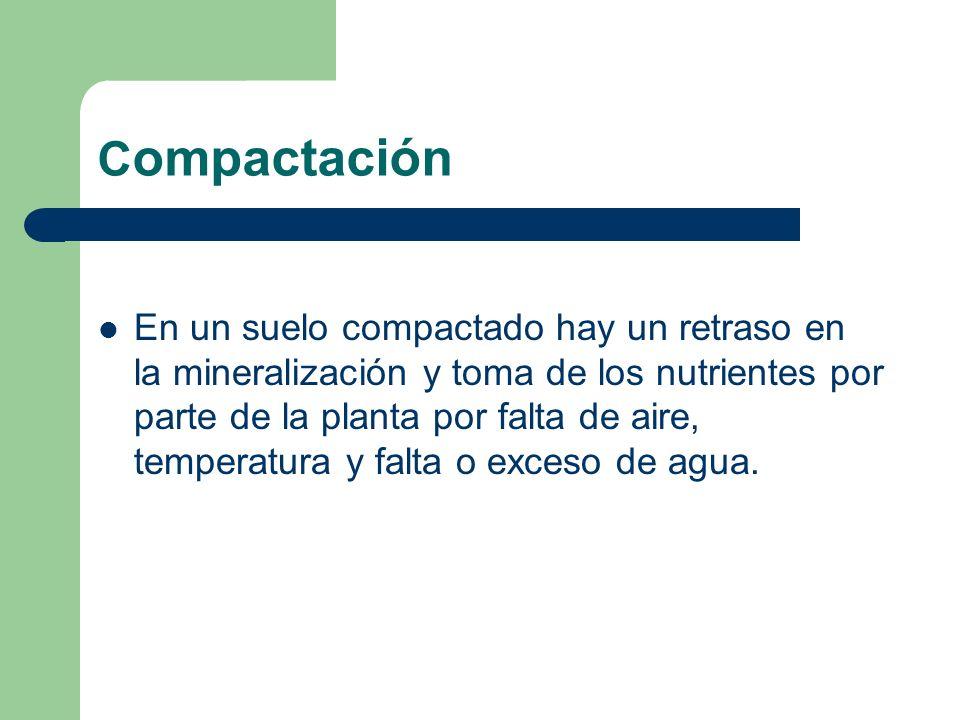 C ompactación En un suelo compactado hay un retraso en la mineralización y toma de los nutrientes por parte de la planta por falta de aire, temperatur