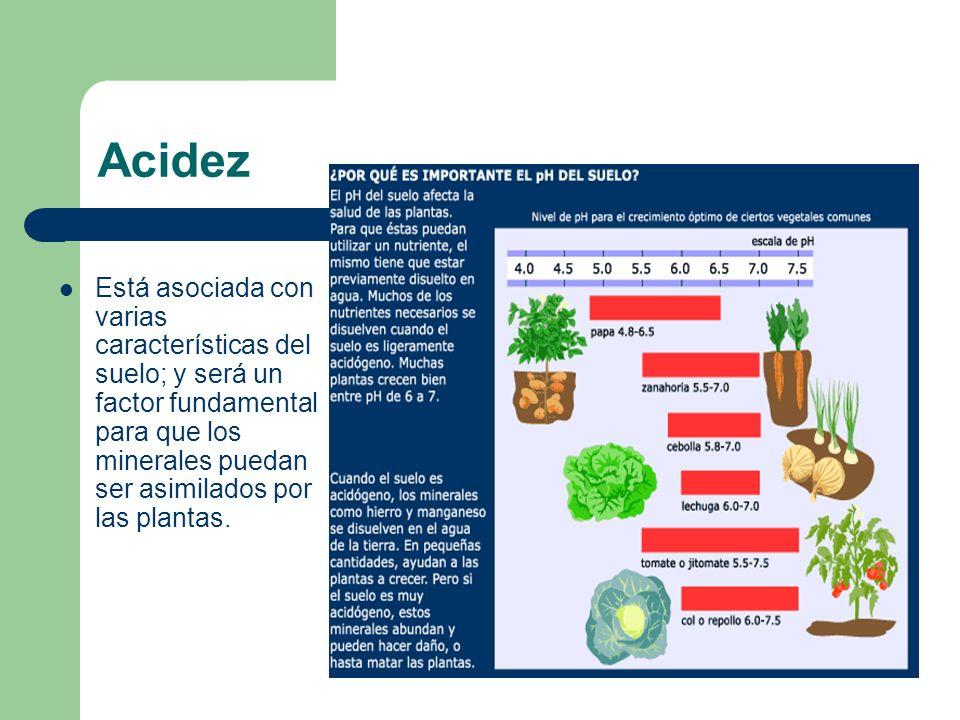 Está asociada con varias características del suelo; y será un factor fundamental para que los minerales puedan ser asimilados por las plantas. Acidez