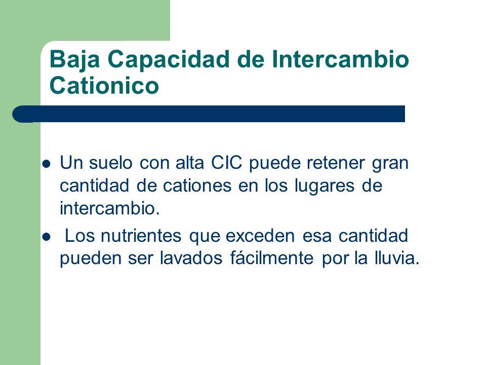 Un suelo con alta CIC puede retener gran cantidad de cationes en los lugares de intercambio. Los nutrientes que exceden esa cantidad pueden ser lavado