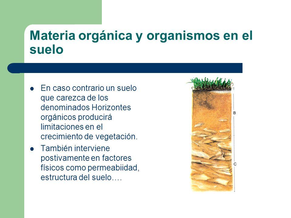 Materia orgánica y organismos en el suelo En caso contrario un suelo que carezca de los denominados Horizontes orgánicos producirá limitaciones en el