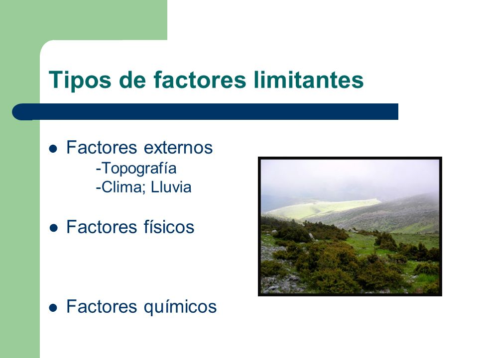 Tipos de factores limitantes Factores externos -Topografía -Clima; Lluvia Factores físicos Factores químicos