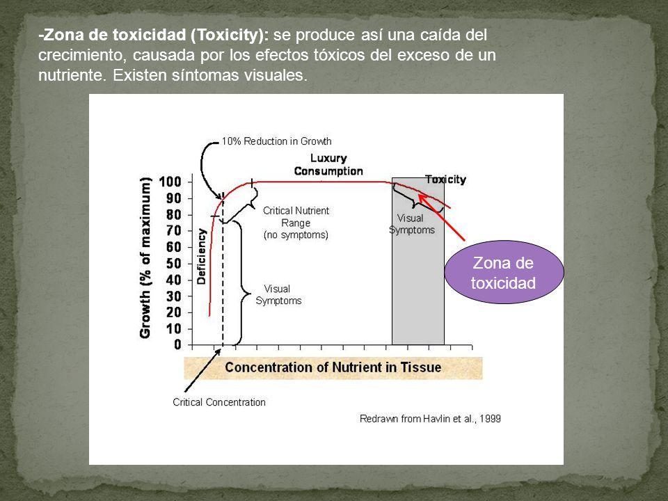 -Zona de toxicidad (Toxicity): se produce así una caída del crecimiento, causada por los efectos tóxicos del exceso de un nutriente. Existen síntomas