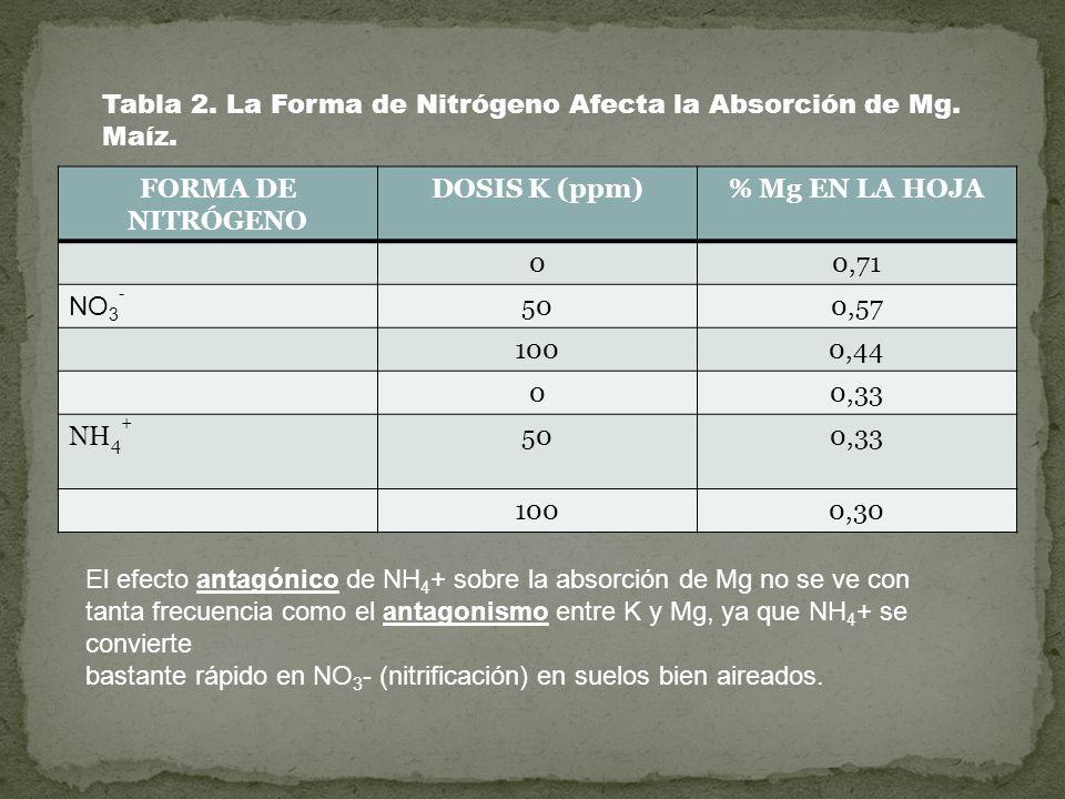 FORMA DE NITRÓGENO DOSIS K (ppm)% Mg EN LA HOJA 00,71 NO 3 - 500,57 1000,44 00,33 NH 4 + 500,33 1000,30 Tabla 2. La Forma de Nitrógeno Afecta la Absor