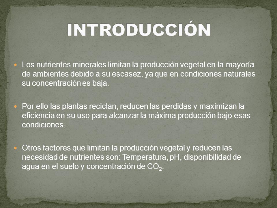 Los nutrientes minerales limitan la producción vegetal en la mayoría de ambientes debido a su escasez, ya que en condiciones naturales su concentració
