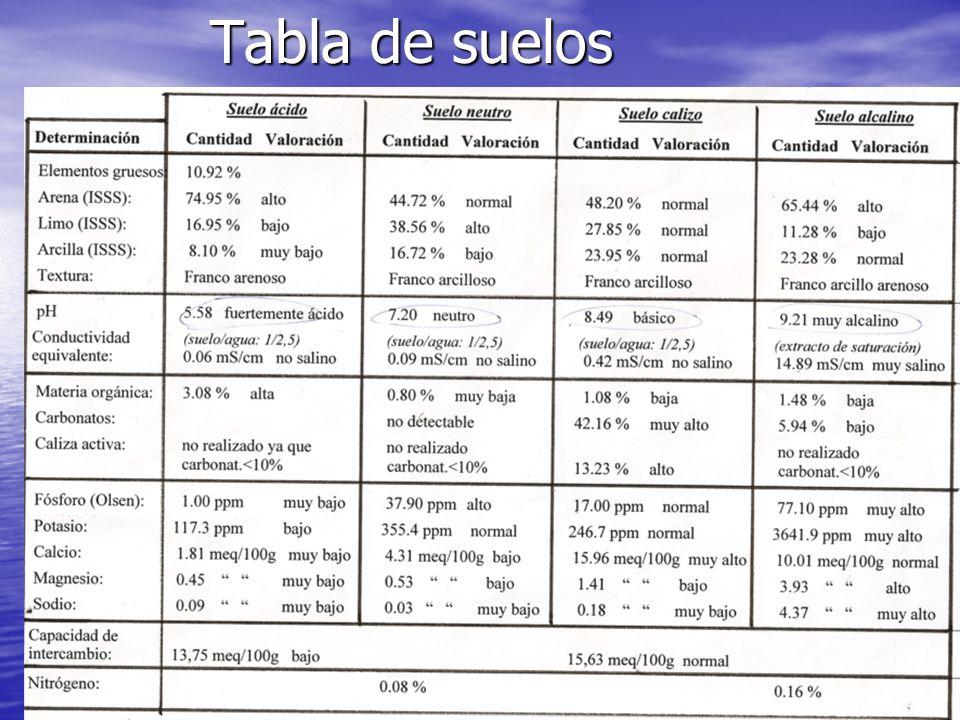 BIBLIOGRAFÍA Edafología para la agricultura y medio ambiente.