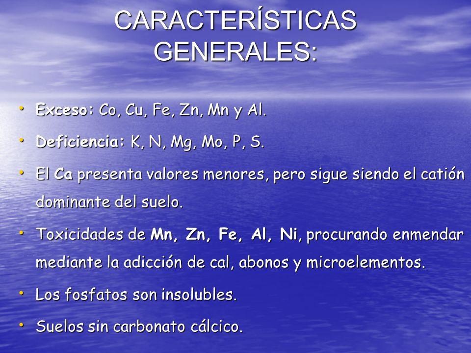 CARACTERÍSTICAS GENERALES: Exceso: Co, Cu, Fe, Zn, Mn y Al. Exceso: Co, Cu, Fe, Zn, Mn y Al. Deficiencia: K, N, Mg, Mo, P, S. Deficiencia: K, N, Mg, M