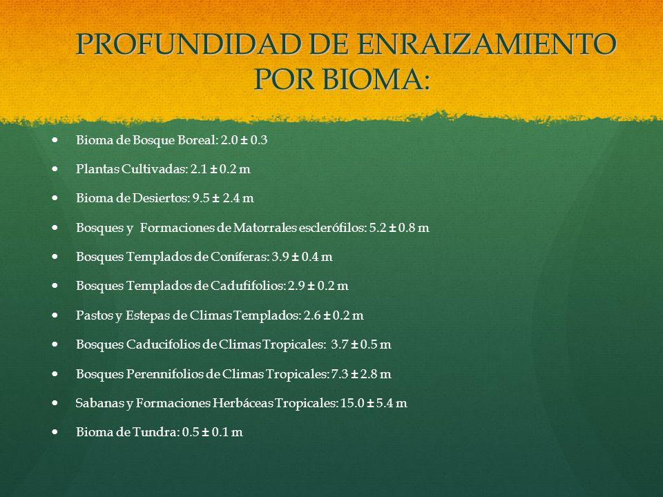 PROFUNDIDAD DE ENRAIZAMIENTO POR BIOMA: PROFUNDIDAD DE ENRAIZAMIENTO POR BIOMA: Bioma de Bosque Boreal: 2.0 ± 0.3 Plantas Cultivadas: 2.1 ± 0.2 m Biom
