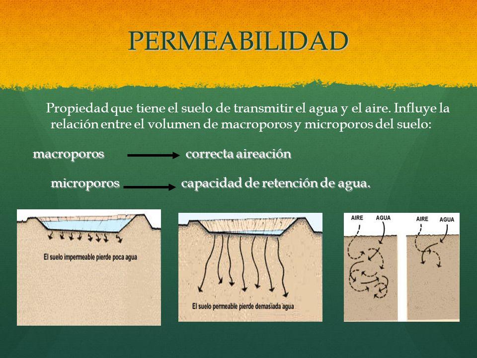 PERMEABILIDAD Propiedad que tiene el suelo de transmitir el agua y el aire. Influye la relación entre el volumen de macroporos y microporos del suelo: