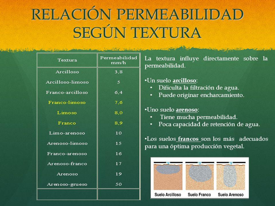 RELACIÓN PERMEABILIDAD SEGÚN TEXTURA La textura influye directamente sobre la permeabilidad. Un suelo arcilloso : Dificulta la filtración de agua. Pue