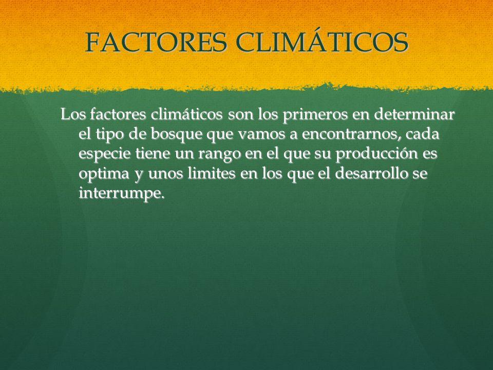 FACTORES CLIMÁTICOS Los factores climáticos son los primeros en determinar el tipo de bosque que vamos a encontrarnos, cada especie tiene un rango en