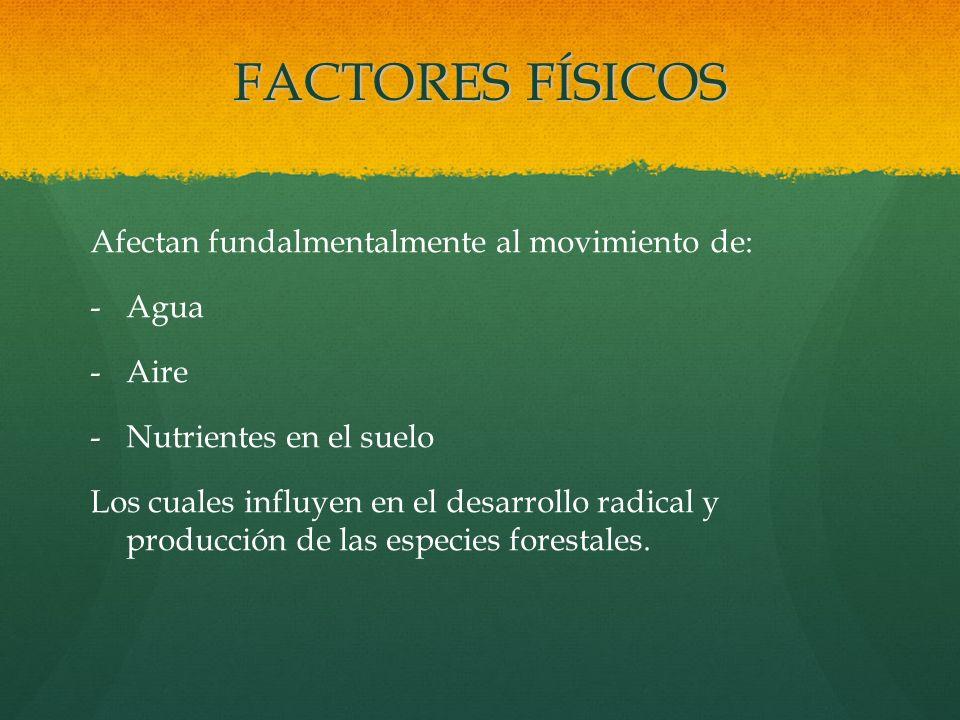 FACTORES FÍSICOS Afectan fundalmentalmente al movimiento de: - -Agua - -Aire - -Nutrientes en el suelo Los cuales influyen en el desarrollo radical y