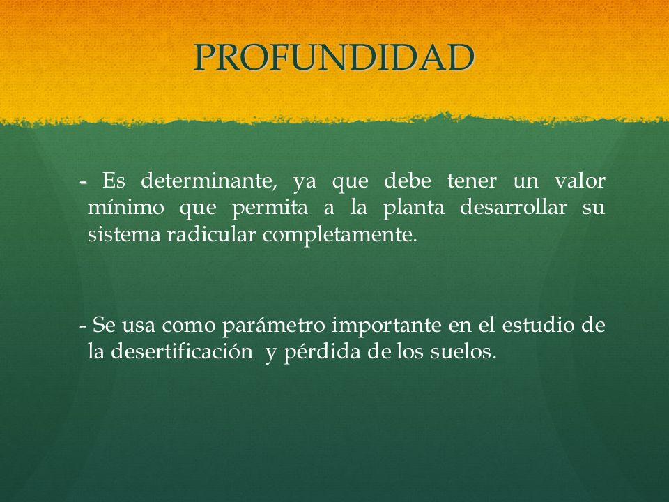 PROFUNDIDAD - - Es determinante, ya que debe tener un valor mínimo que permita a la planta desarrollar su sistema radicular completamente. - Se usa co