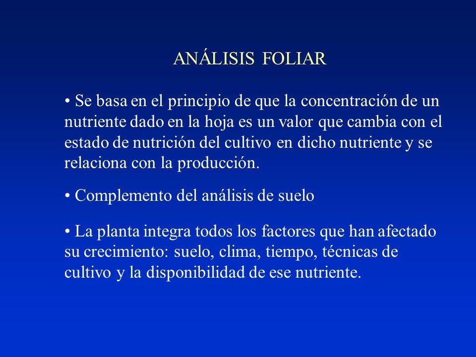ANÁLISIS FOLIAR Se basa en el principio de que la concentración de un nutriente dado en la hoja es un valor que cambia con el estado de nutrición del