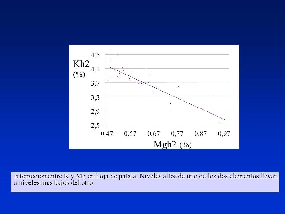 Interacción entre K y Mg en hoja de patata. Niveles altos de uno de los dos elementos llevan a niveles más bajos del otro.