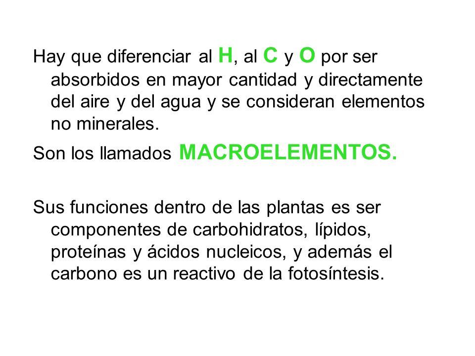 Hay que diferenciar al H, al C y O por ser absorbidos en mayor cantidad y directamente del aire y del agua y se consideran elementos no minerales. Son