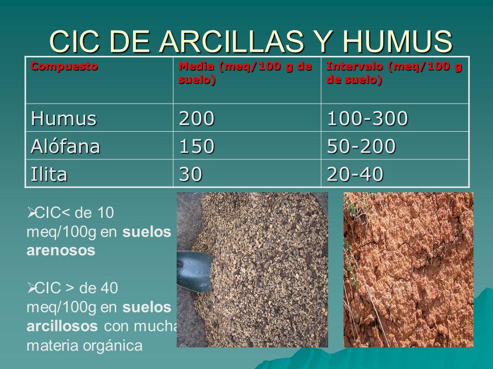 CIC DE ARCILLAS Y HUMUS Compuesto Media (meq/100 g de suelo) Intervalo (meq/100 g de suelo) Humus200100-300 Alófana15050-200 Ilita3020-40 CIC< de 10 m