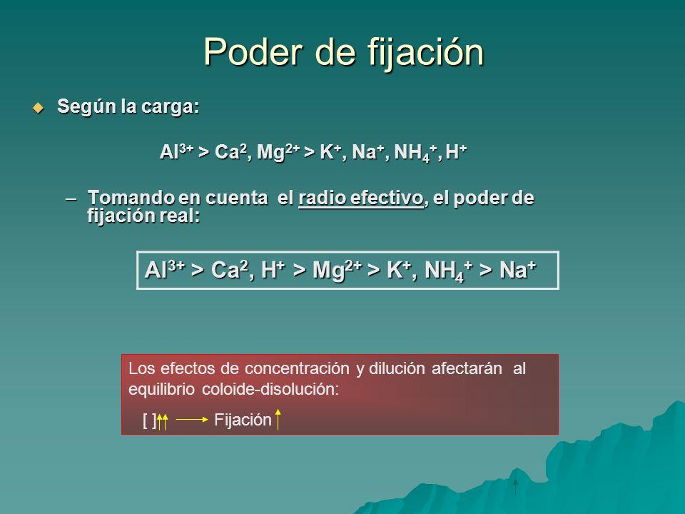 Poder de fijación Según la carga: Según la carga: Al 3+ > Ca 2, Mg 2+ > K +, Na +, NH 4 +, H + –Tomando en cuenta el radio efectivo, el poder de fijac