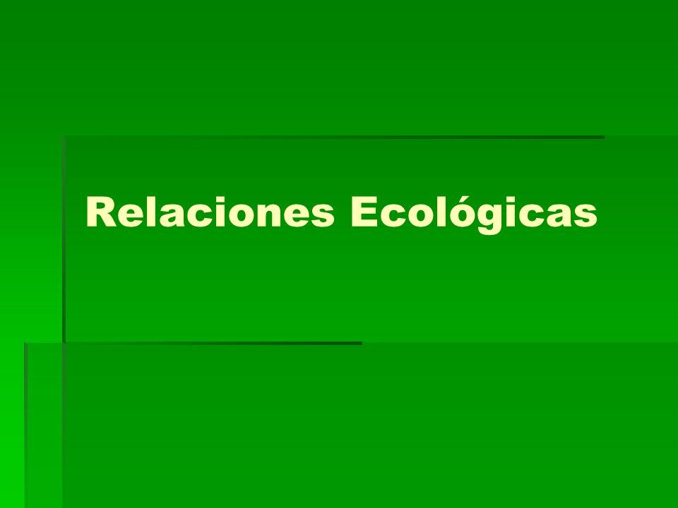 Relaciones Ecológicas