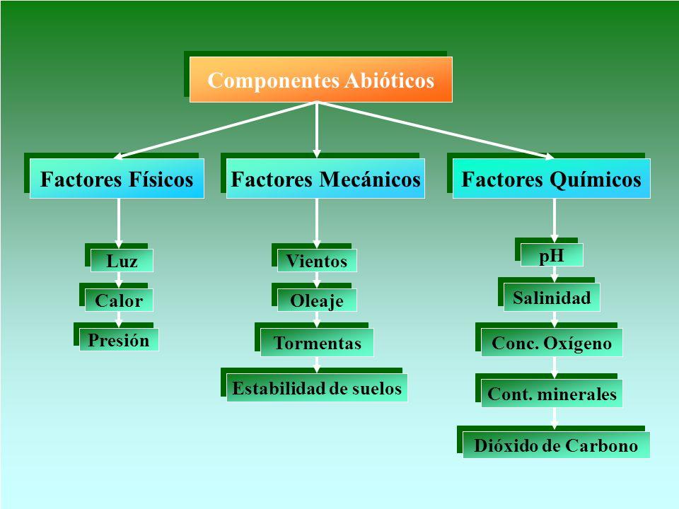 Componentes Abióticos Factores Físicos Factores Químicos Calor Luz Presión Factores Mecánicos Vientos Oleaje Tormentas Estabilidad de suelos pH Dióxid
