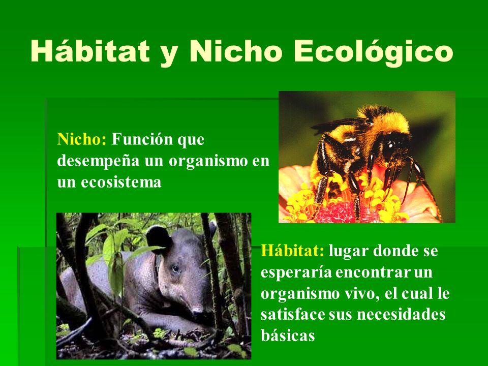Nicho: Función que desempeña un organismo en un ecosistema Hábitat: lugar donde se esperaría encontrar un organismo vivo, el cual le satisface sus nec