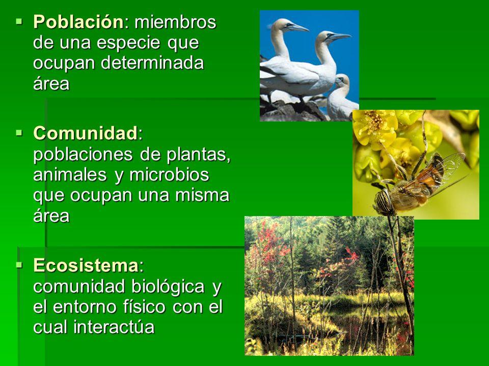 Población: miembros de una especie que ocupan determinada área Población: miembros de una especie que ocupan determinada área Comunidad: poblaciones d