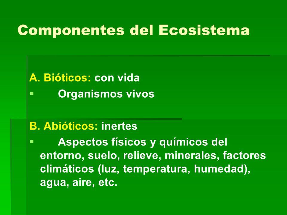 Componentes del Ecosistema A. Bióticos: con vida Organismos vivos B. Abióticos: inertes Aspectos físicos y químicos del entorno, suelo, relieve, miner
