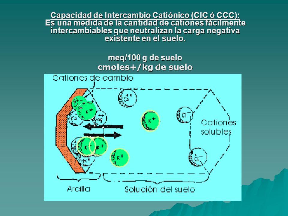Factores que regulan el contenido de cationes del suelo FACTORES INTRÍNSECOS Roca madre: Roca madre: - Graníticas Alto contenido de Si 2+ y Al 3+ - Calizas Ricas en cationes básicos - Sedimentarias H +, Al 3+ CIC de las arcillas CIC de las arcillas Materia orgánica: Materia orgánica: - Ácidos fúlvicos (pH bajo y menos carbonos) - Ácidos húmicos (pH alto) Tamaño de los poros y capacidad de retención Tamaño de los poros y capacidad de retención