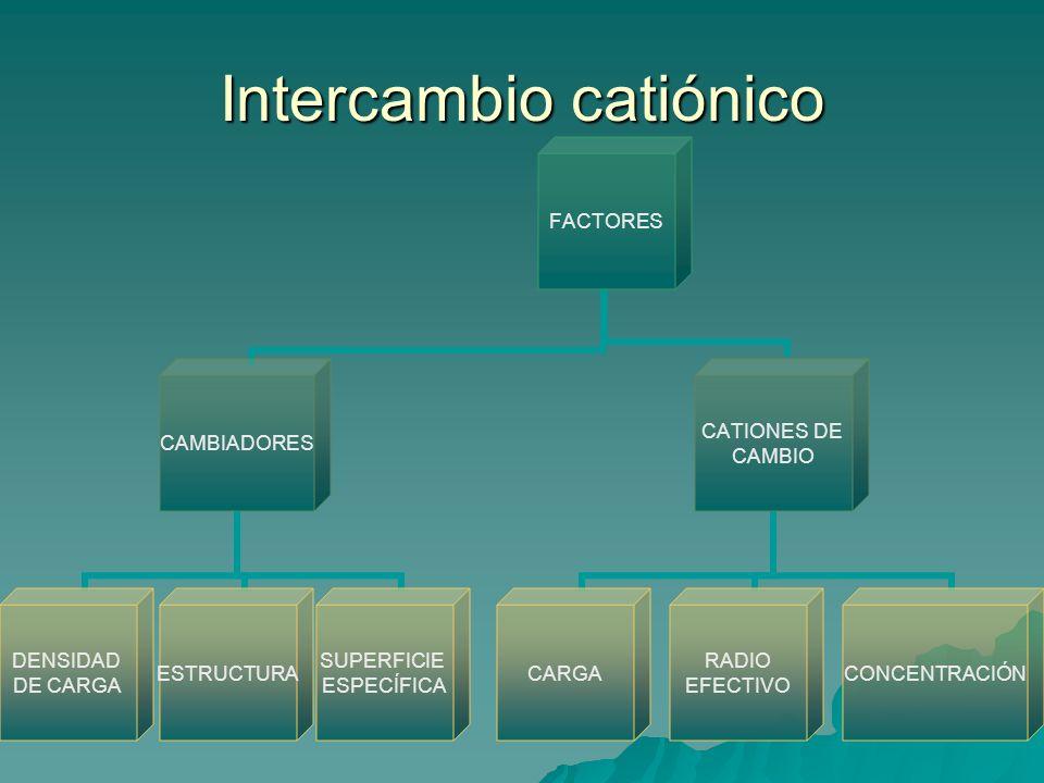 Cationes de cambio Unión catión-coloide: por fuerzas electroestáticas que dependen de la distancia de la carga del catión a la superficie del coloide.