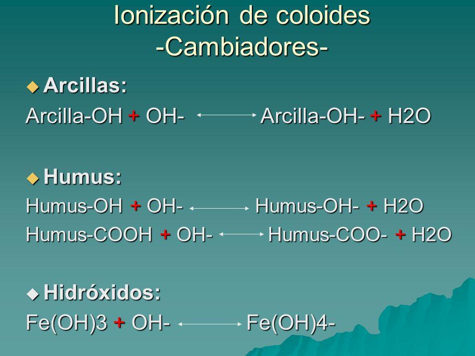 Principales cationes esenciales para la planta: Ca 2+, Mg 2+, K +, Na + Principales cationes esenciales para la planta: Ca 2+, Mg 2+, K +, Na + Σ Bases = Saturación de bases (S) Σ Cationes ácidos = Insaturación (H +, Al 3+ ) T = CIC V % = (S/T) X 100 V < 50% SUELO NO SATURADO (medio pobre en nutrientes) V > 50% SUELO SATURADO