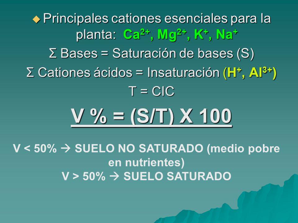 También son importantes los cationes: Fe 2+, Mn 2+, Zn 2+, Cu 2+, B 3+, Mo 4+ nitrificación.
