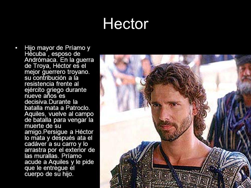 Hector Hijo mayor de Príamo y Hécuba, esposo de Andrómaca. En la guerra de Troya, Héctor es el mejor guerrero troyano. su contribución a la resistenci